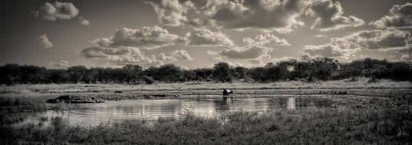 Wall Art - Photograph - Hippo Pond by Jason Lanier