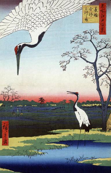 Wall Art - Painting - Hiroshige Cranes, 1857 by Granger
