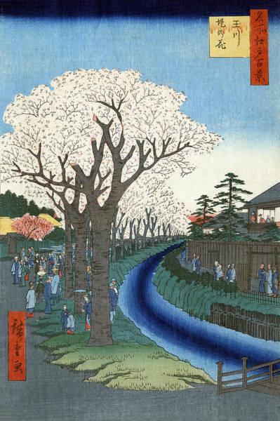 Wall Art - Painting - Hiroshige Tama River, 1856 by Granger