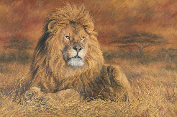 Lions Painting - His Majesty by Lucie Bilodeau