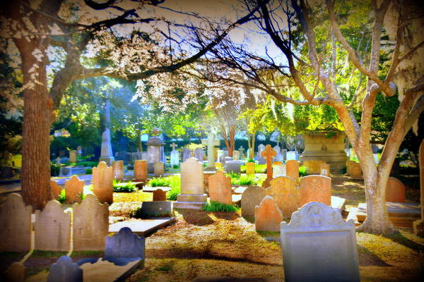Wall Art - Photograph - Historic Cemetery  by Lisa Wooten