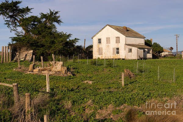 Wing Back Photograph - Historic D Ranch In Point Reyes California Dsc2357 by Wingsdomain Art and Photography