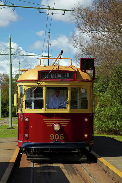 Auckland Photograph - Historic Tram, Motat (museum by David Wall