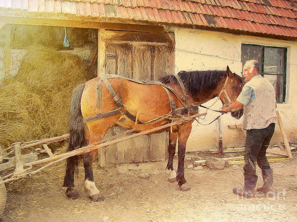 Horsemanship Painting - Hitched The Horses by Odon Czintos