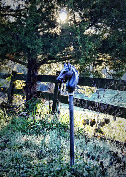 Photograph - Hitching Post by Cricket Hackmann