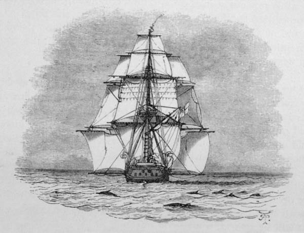 Wall Art - Drawing - Hms Beagle Among Porpoises  Charles by Mary Evans Picture Library
