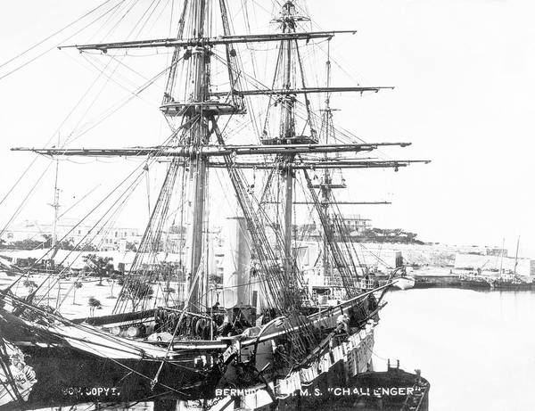 Bermuda Photograph - Hms Challenger In Bermuda by Natural History Museum, London/science Photo Library