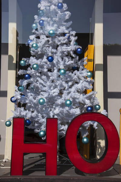 Window Shopping Photograph - Ho Christmas Tree by Garry Gay