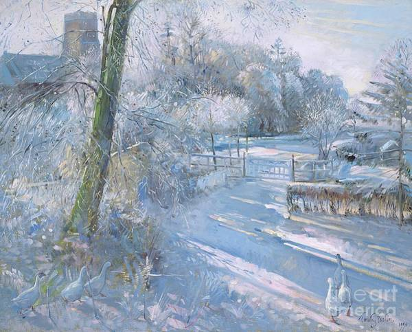 Lane Painting - Hoar Frost Morning by Timothy  Easton