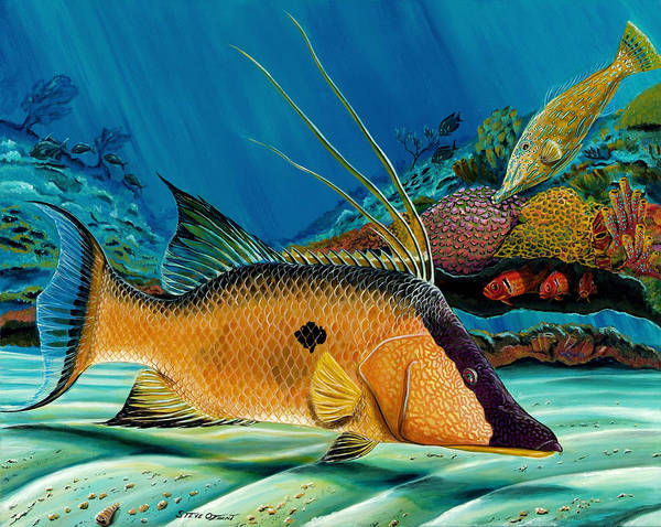 Painting - Hog And Filefish by Steve Ozment