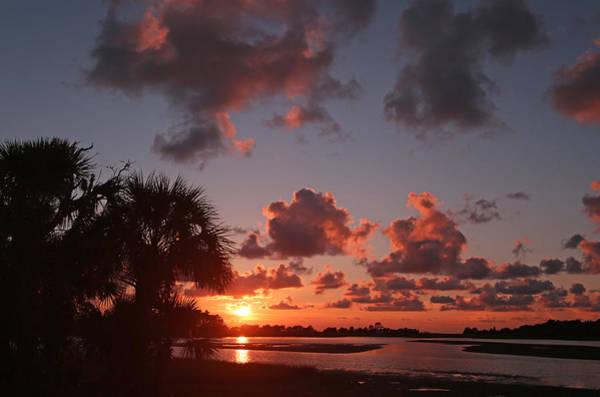 Photograph - Hog Island Sunset by Jean Clark