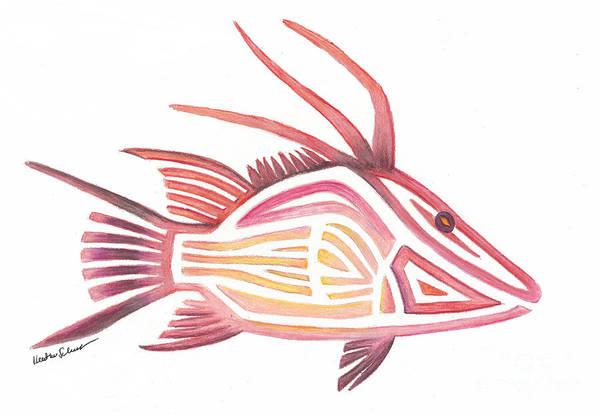 Photograph - Hogfish by Heather Schaefer