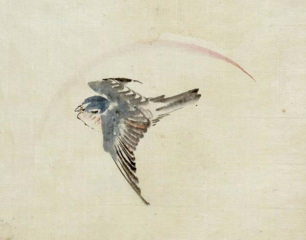 Wall Art - Drawing - Hokusai Bird, C1840 by Granger