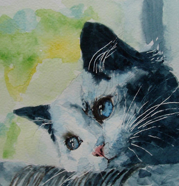 Kitten Wall Art - Painting - Hold Me Closer Tiny Dancer by Paul Lovering