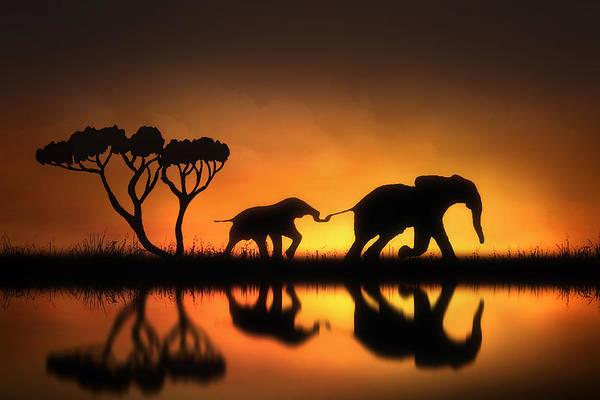 Wildlife Digital Art - Holding On by Jennifer Woodward