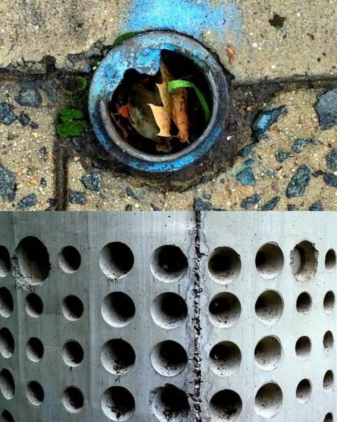 Photograph - Holey Optical Three by Marlene Burns