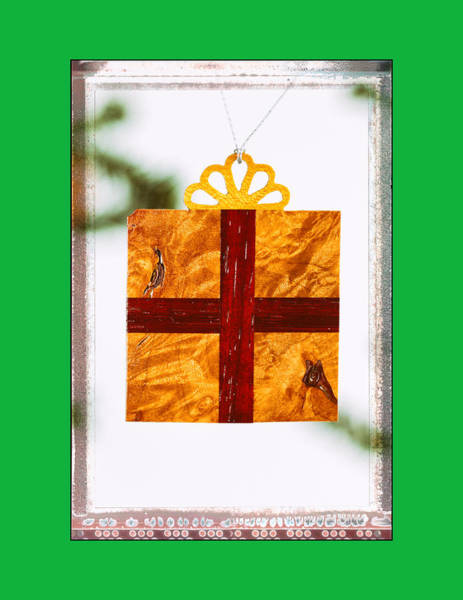Photograph - Holiday Gift Box Art Ornament In Green by Jo Ann Tomaselli