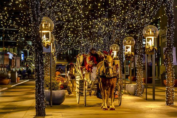 Photograph - Holiday Lights Wonderland by Teri Virbickis