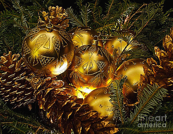 Photograph - Holiday Ornaments by Nick Zelinsky