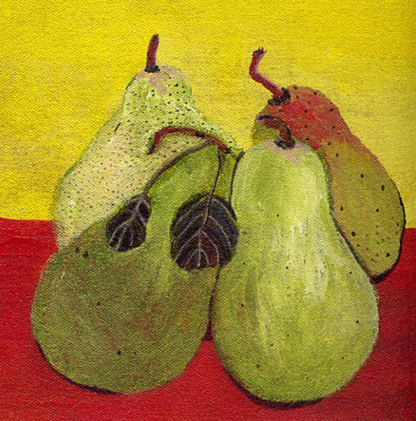 Still Life Wall Art - Photograph - Holiday Pears by Caroline Blum
