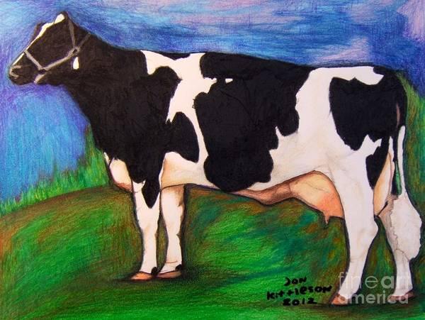 Drawing - Holstein by Jon Kittleson