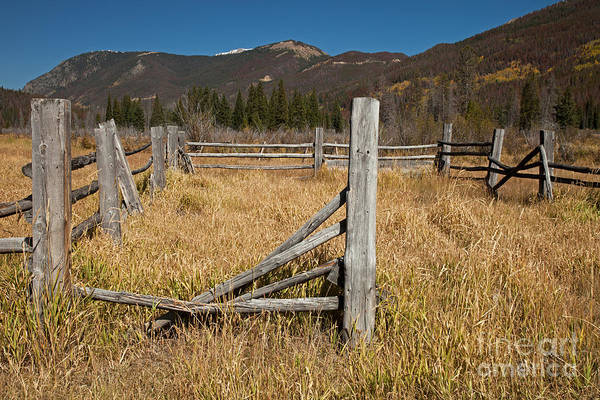 Photograph - Holzwarth Historic Site In The Kawuneeche Valley by Fred Stearns