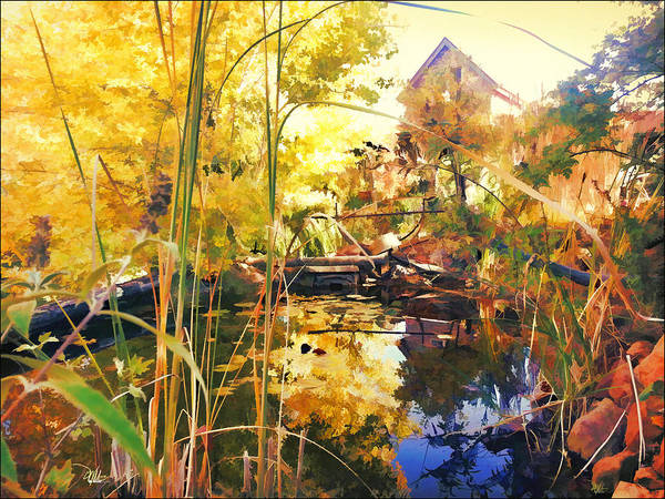 Wall Art - Painting - Home Garden And Pond by Douglas MooreZart