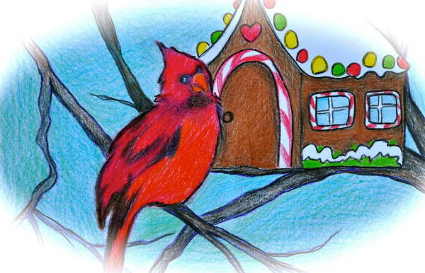 Red Cardinal Drawing - Home Sweet Home by Debi Starr