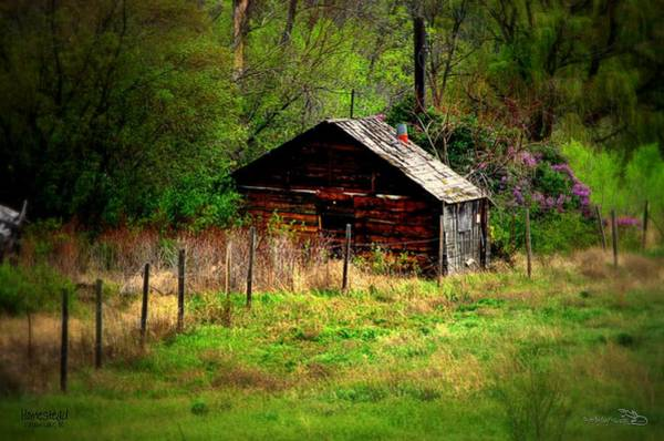 Photograph - Homestead - Vaseux Lake by Guy Hoffman