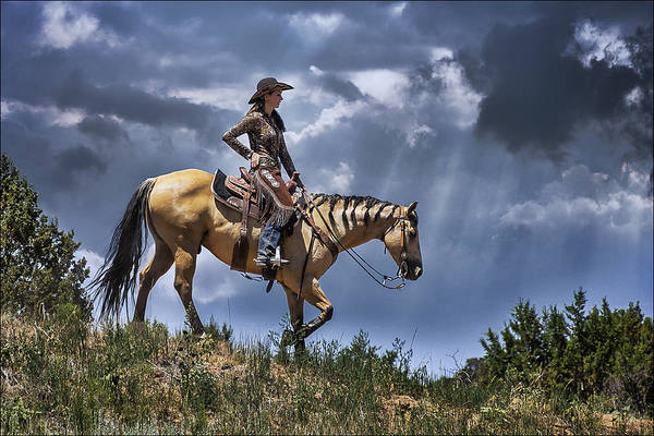 Mounted Shooting Photograph - Homeward Bound by Priscilla Burgers