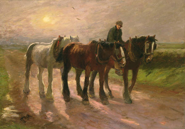 Ploughing Painting - Homeward by Harry Fidler