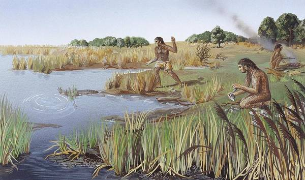 Wall Art - Photograph - Homo Erectus Lakeside Camp by Natural History Museum, London/science Photo Library
