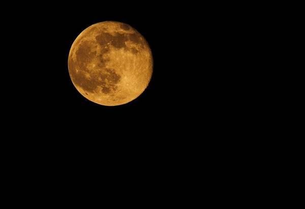 Wall Art - Photograph - Honey Moon Full Moon 2014 by Dan Sproul
