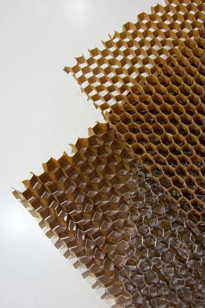Coring Photograph - Honeycomb Panel Cores. by Mark Williamson/science Photo Library