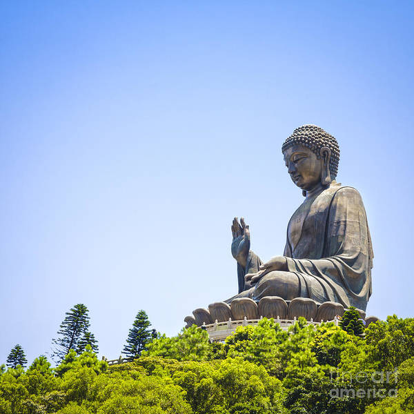 Buddhism Wall Art - Photograph - Hong Kong The Giant Buddha by Colin and Linda McKie
