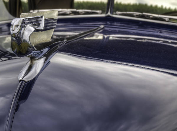 Photograph - Hood Ornament For 1940 Chevrolet by Thomas Young