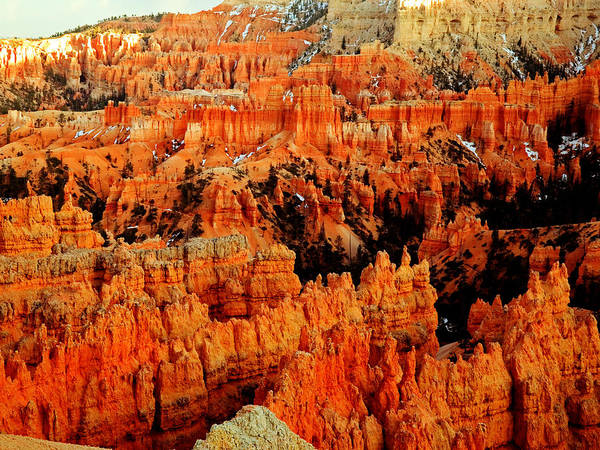 Photograph - Hoodoo Forest by TL  Mair