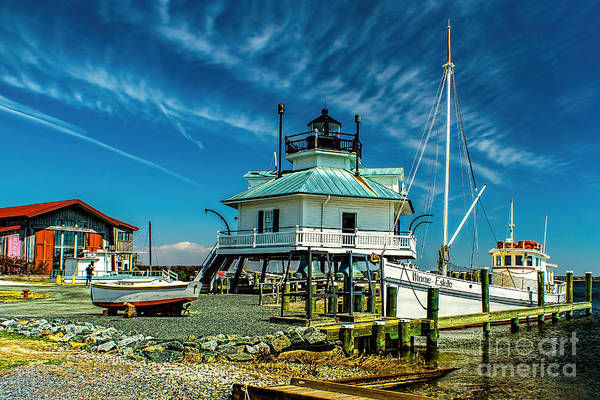 Photograph - Hooper Strait Maryland by Nick Zelinsky