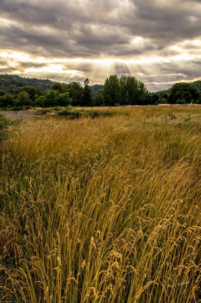 Rogue Valley Photograph - Hope From Above by Mick Anderson