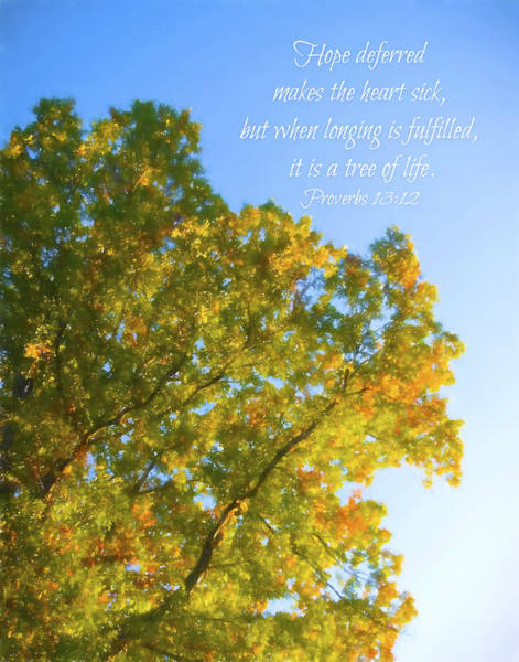 Photograph - Hope Tree Of Life Proverbs 13 by Denise Beverly