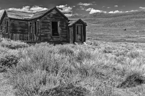 Bodie Ghost Town Wall Art - Photograph - Hopeless But Standing by Jon Glaser