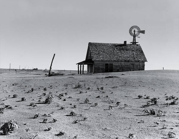 Dust Photograph - Hoping For Rain Circa 1938 by Aged Pixel