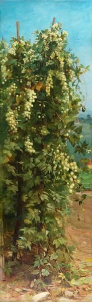 Crop Painting - Hops 1882 by Philip Hermogenes Calderon