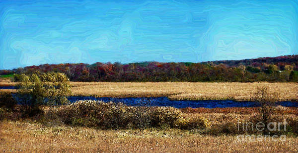 Horicon Wall Art - Photograph - Horicon Marsh - Digital Oil by Mary Machare
