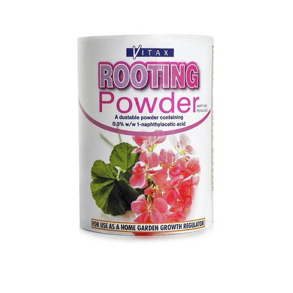 Synthetic Photograph - Hormone Rooting Powder by Science Photo Library