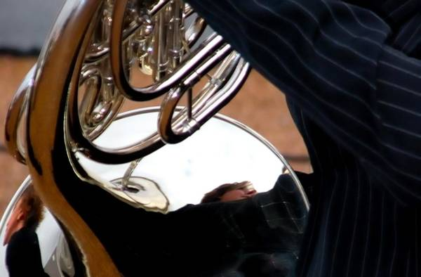 Photograph - Horn Reflections 7053 by Jerry Sodorff