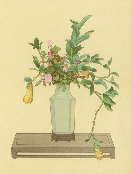 Chien Drawing - Horned Orange And Rose Used With A Vase by Mary Evans Picture Library