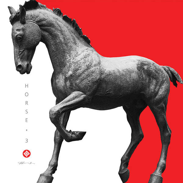 Photograph - Horse 3 by David Davies