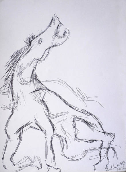 Drawing - Horse ...after Picasso by Paul Sutcliffe
