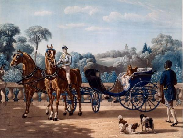 Vehicle Drawing - Horse And Carriage, First Half C19th by Henri d'Ainecy, Comte de Montpezat